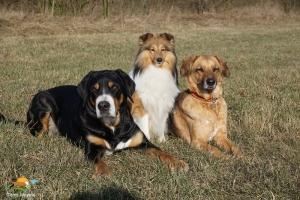 Aisha, Joris und Iola